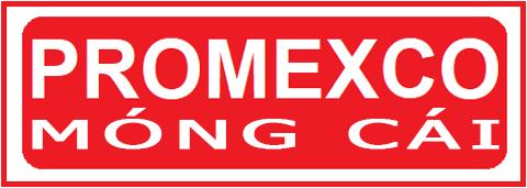 Dự án Khu đô thị Promexco Móng Cái